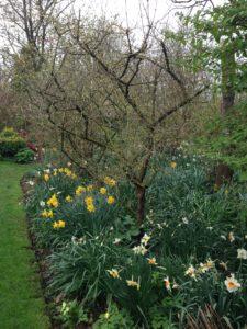 Blog April – 14