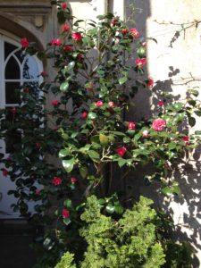 Blog April – 9